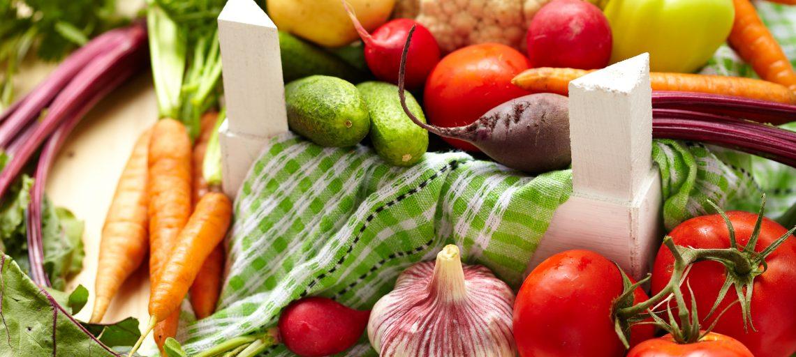 Hidratação e dieta para o inverno-capa